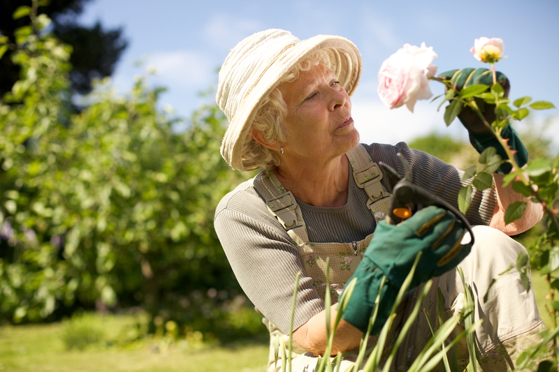 5 Fun Hobbies for Morristown Seniors