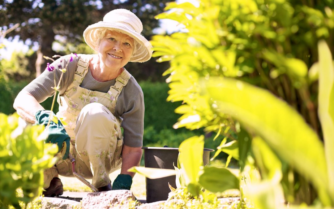 Five Easy Spring Cleaning Ideas for Seniors