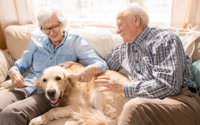 10 Reasons Why Independent Senior Living at Regency Morristown is the BEST!